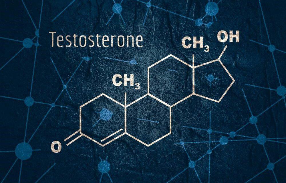 Testosteron: mannen kunnen het te veel hebben, maar ook te weinig